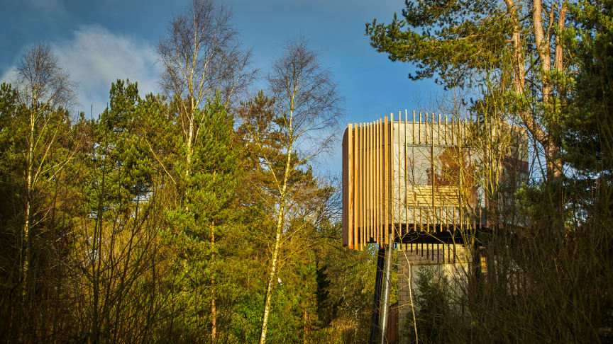 The Treetop Sauna nestled in the forest canopy at Aqua Sana Sherwood Forest