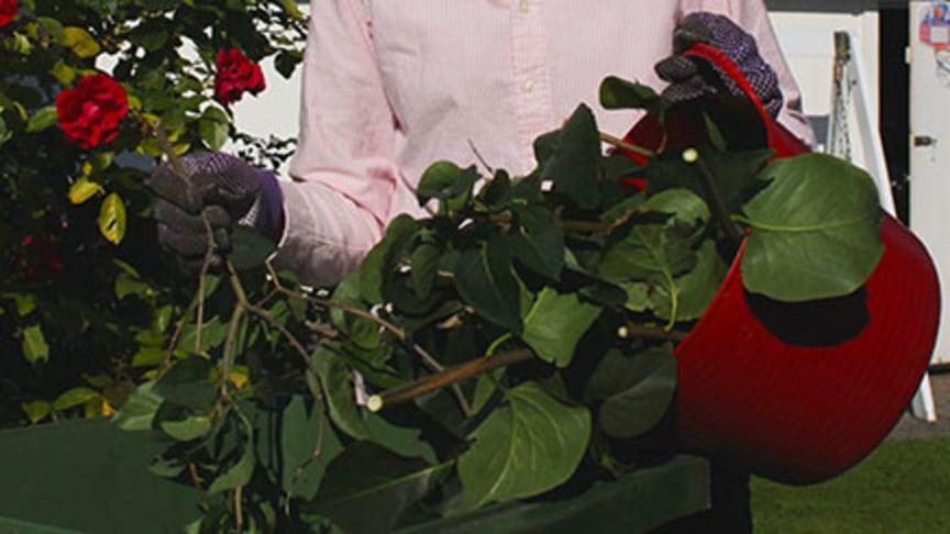 Trädgårdssäsongen drar igång! Från och med vecka 9 och 10 tömmer VA SYD trädgårdskärlen efter vinterpausen.