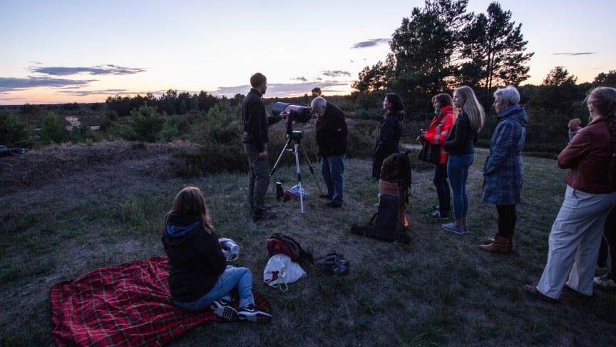 Einmalige Ausblicke bietet die Sternenwanderung in der Kyritz-Ruppiner Heide. Foto: Nora Künkler.