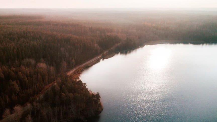 Sveriges mäklare drabbade av stegrande skadeståndsanspråk – Skyddet måste förbättras