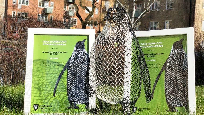 Pingvinpriset till Gröna Solberga
