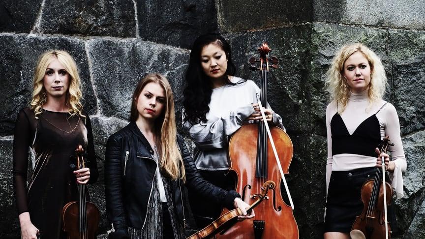 Rosa kvartetten kombinerar den klassiska stråkkvartettens atmosfär med nya och innovativa idéer.