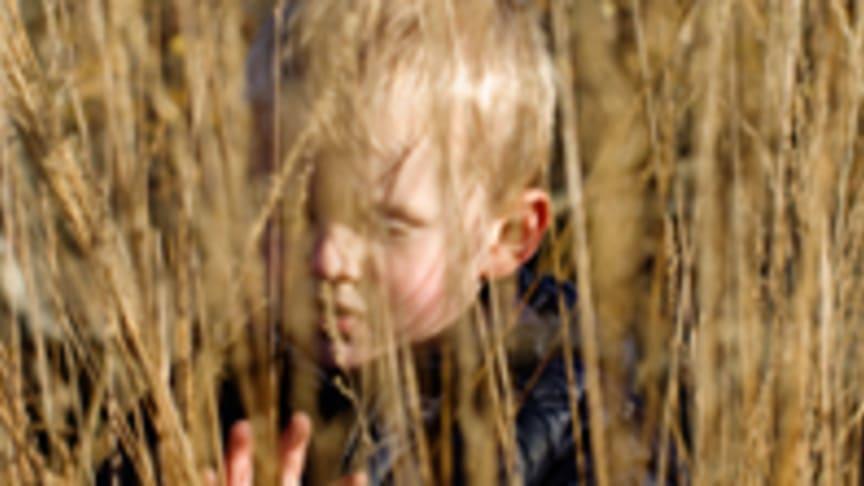 Webbutbildning för dig som möter Barn som anhöriga
