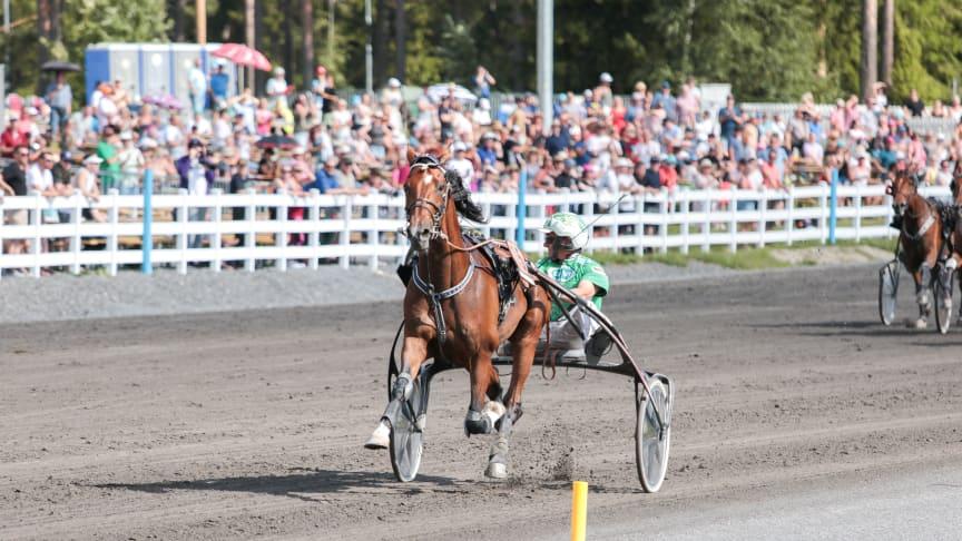 Finsk segermaskin klar för Sofiero Åby Stora Pris!