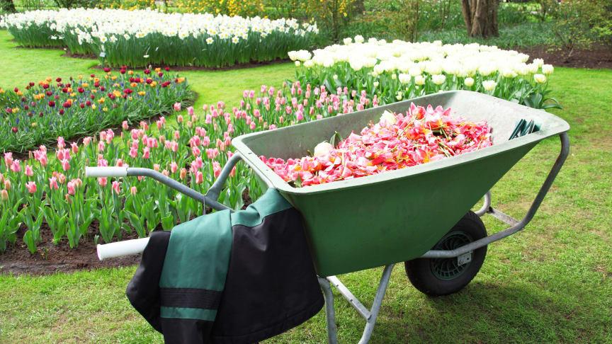 Skyddar du dig mot våren?