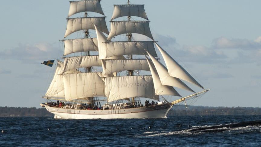 Hållbara Hav och briggen Tre Kronor af Stockholm visar skepp och miljöutställning i Karlshamn 25-26 juli