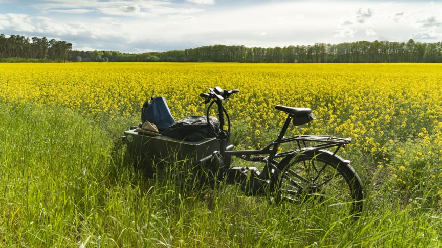 Der Pakesel unter den Fahrrädern: Mit dem E-Lastenrad zum mehrtägigen Radurlaub in Brandenburg. Foto: Cargobike Adventures.