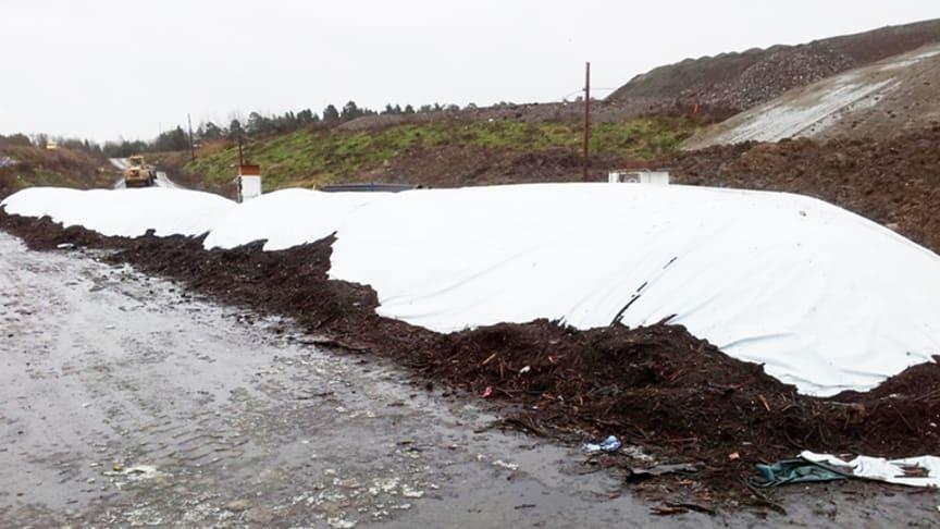 Rapportframsidesbild: Täckt behandling av 65 ton avloppsslam. Fotograf: Annika Nordin, SLU