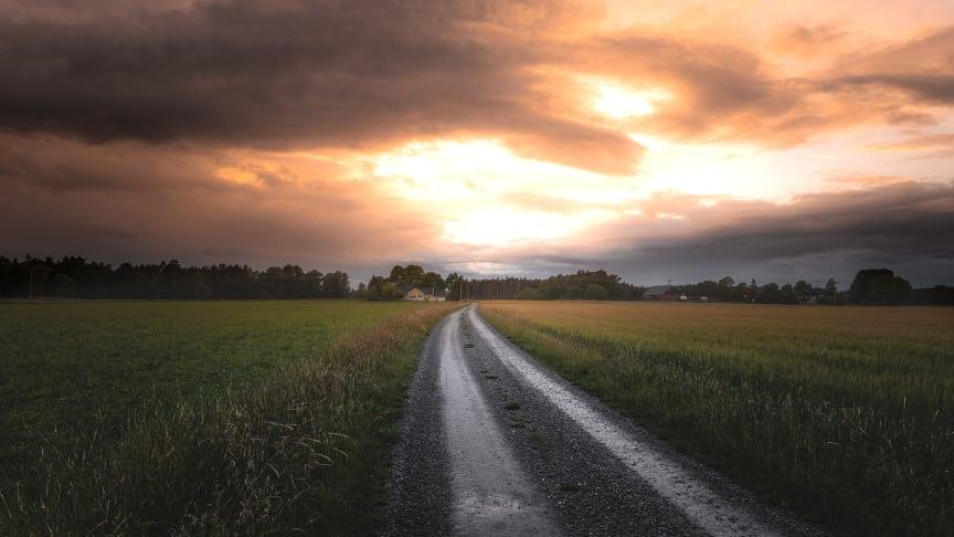 2019-11-15 Landskapsforum 2019: Landskap – ett vidsträckt begrepp (foto: Henrik Berg/Unsplash)