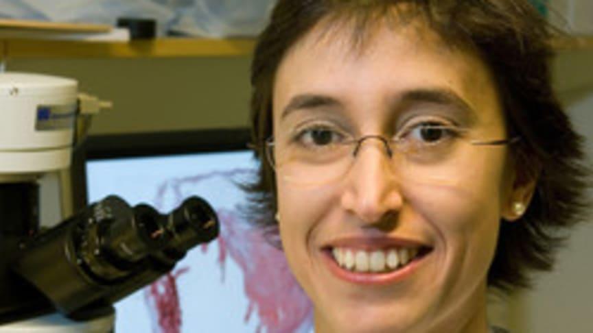 Isabel Goncalves, Professor vid Experimentell Kardiovaskulär forskning på Lunds Universitet, fick första priset till en yngre framgångsrik klinisk forskare vid Region Skåne. Hon har även utdelats flera priser och utmärkelser för sin f