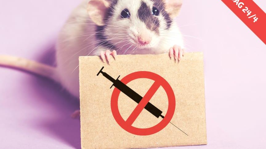 Djur i pälsindustrin | Djurens Rätt