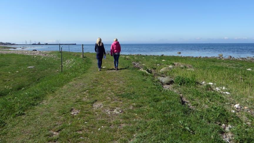 Skåneleden är en fantastiskt vacker vandringsled längs kusten i Kävlinge kommun.