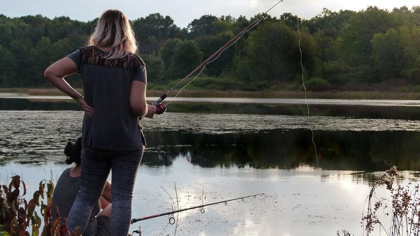 Det finns flera saker du kan göra för att inte sprida främmande arter till våra stora sjöar i sommar. Foto: Pixabay.