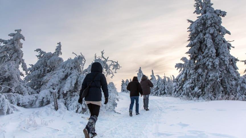 Winter-Wandern im Erzgebirge