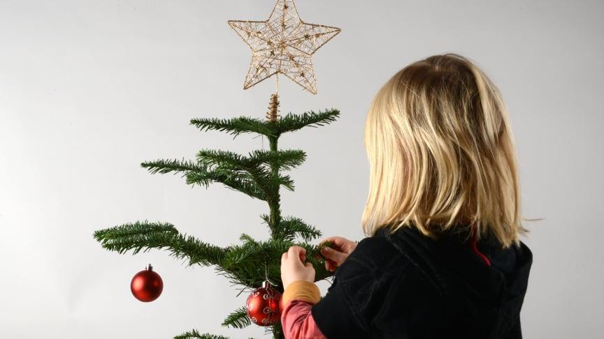Bikubenfonden nytænker sin uddeling af julehjælp
