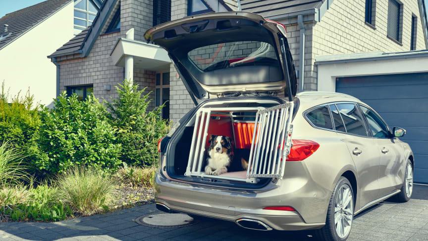 Stor Ford-undersøkelse: 1 av 3 sikrer ikke hunden i bilen