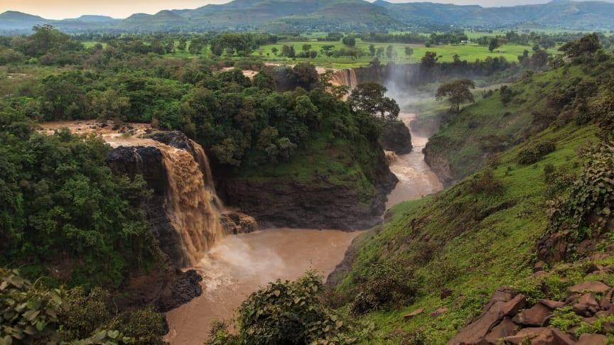 Etiopien har en rig biodiversitet, og meget af det, der er forsvundet, kan blive genskabt med den rigtige indsats