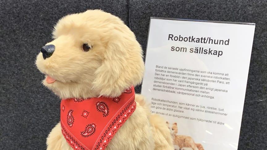 Det finns inte bara robotkatter utan även robothundar på årets Nolia Karriär.