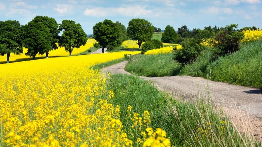 Midsona Sverige övergår till fossilfria vägtransporter och ansluter sig till Transportinitiativet.