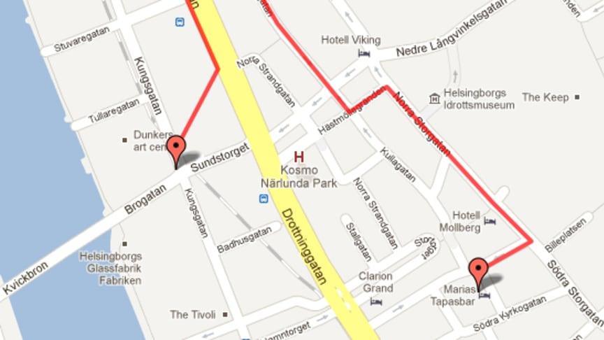 Helsingborg uppmärksammar Earth Hour 31 mars med fackeltåg genom staden