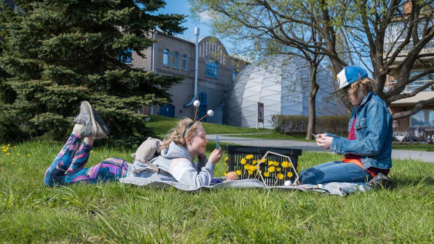 Smilla Olsson Peterson och Hannes Olsson Peterson utforskar bikorgen i parken nedanför Curiosum. Domteatern syns i bakgrunden.