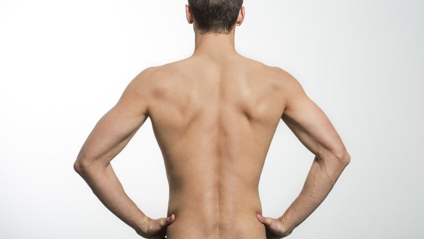"""""""Stärke deine Muskeln – bleib rückenfit!"""" - Das Motto zum diesjährigen Tag der Rückengesundheit"""