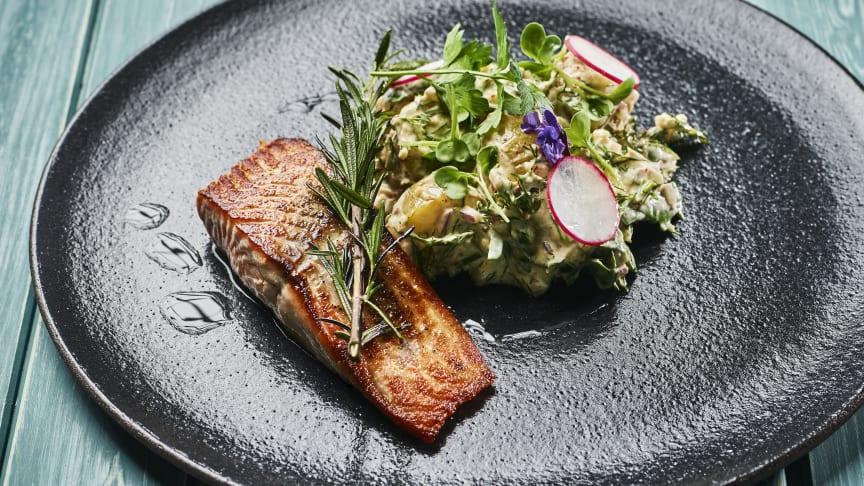 Amerikanerne er kanskje mest kjent for å grille store kjøttstykker, men de er også glad i fisk. Foto: Tom Haga