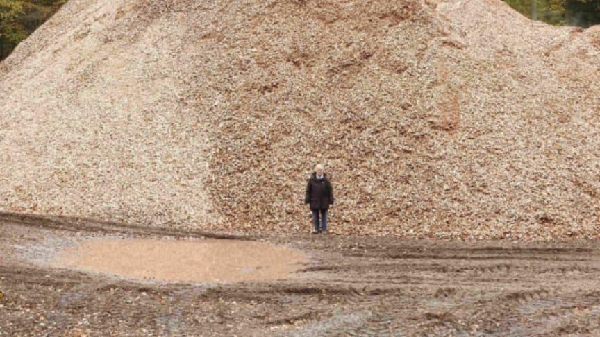 Bjerge af træflis ved Gribskov ligger klar til afhentning og senere afbrænding som såkaldt grøn energi. Foto: Søren Wium-Andersen