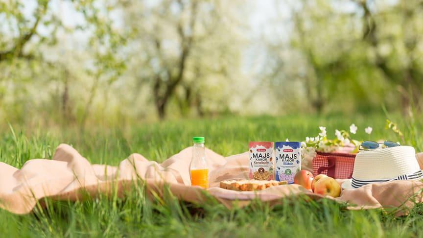 Picknick med Majskakor Blåbär och Kanelbulle