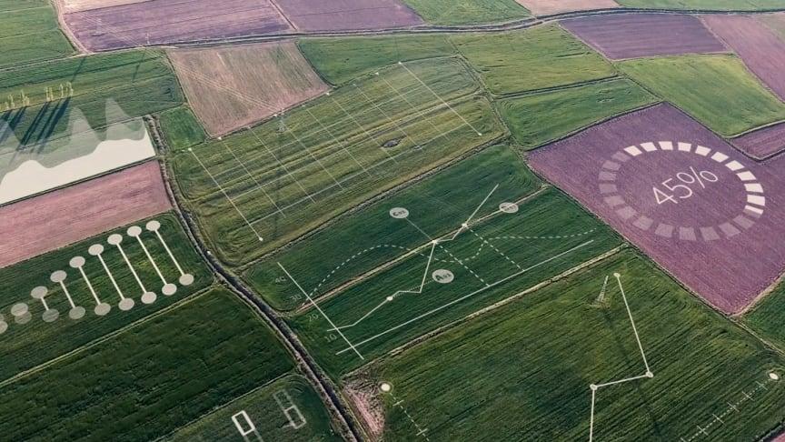 Yara og IBM kombinerer agronomikunnskap og ny teknologi for å utvikle verdens ledende globale digitale landbruksplattform (foto: Yara)