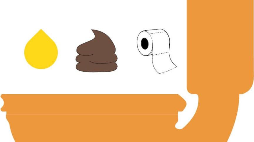Bara kiss, bajs och toalettpapper ska spolas ner i toaletten