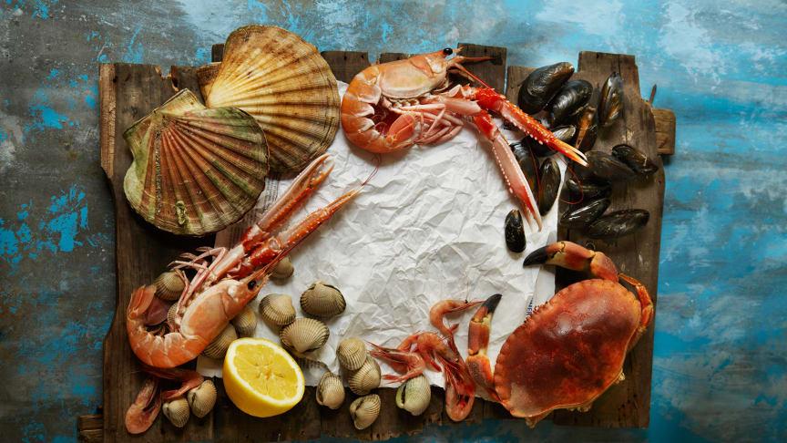Norwegian shellfish is world class