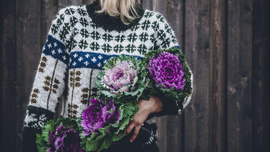 Prydnadskål är en mycket formstark växt som finns i olika färgtoner av vitt, purpur och grönt. Foto: Linda Lomelino
