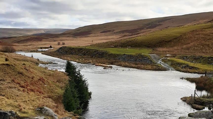 River Claerwen exiting the dam, Elan Valley, Wales (credits: Sara Barrento)