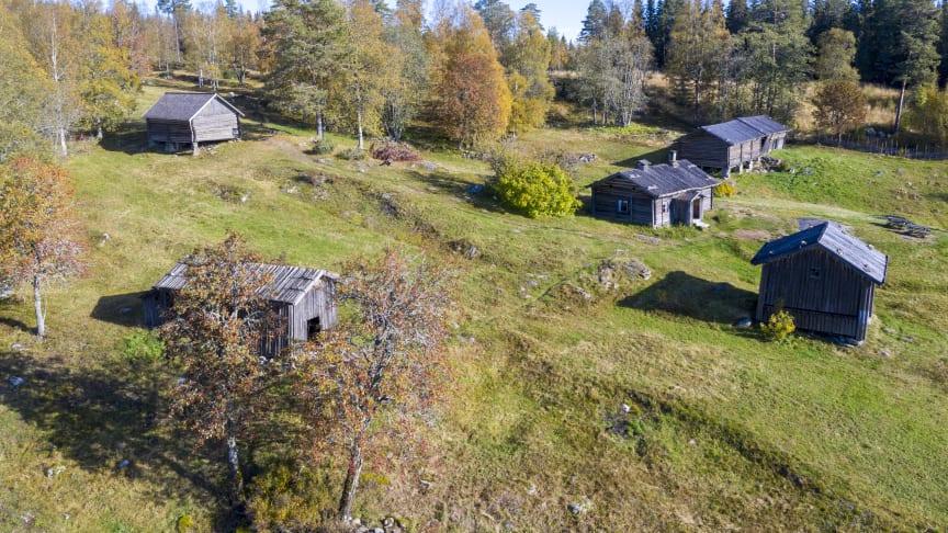 Ritamäki_1910LS_DJI_019_1.JPG