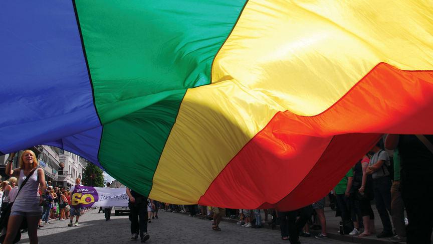 Endre Flatmo (SV) skriver om Pride og behovet for synlighet