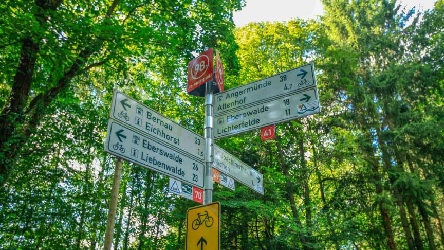 Erfolgskonzept: Knotenpunktradeln, wie hier im Barnim, wird immer beliebter (TMB-Fotoarchiv/Steffen Lehmann)