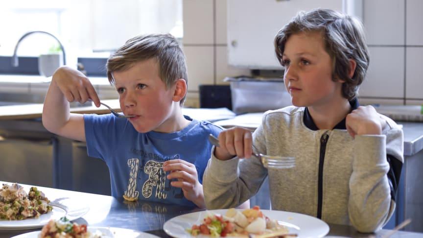 Ny undersøkelse: 7 av 10 barn spiser fisk minst én gang i uken, men bare noen få spiser fisk i henhold til helsemyndighetenes kostråd. FOTO: Sagen/Norges sjømatråd