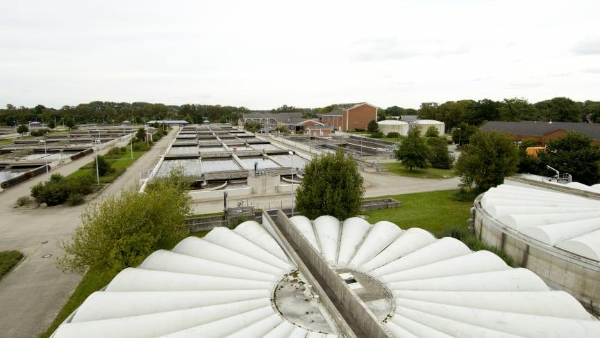 Bis zu 16000 Tonnen Klärschlamm fallen jedes Jahr im Klärwerk Steinhof in Braunschweig an. Veolia und EEW kümmern sich zuverlässig um die Verwertung.