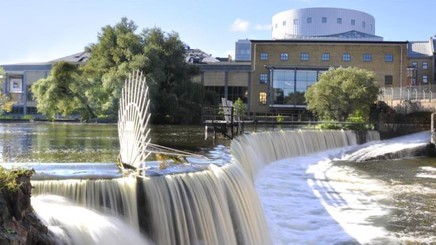 2018 års upplaga av Delaktighetsdagen äger rum i Norrköping.