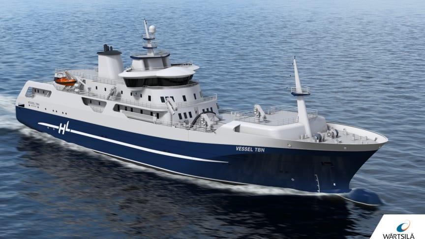 Denne hybridbåten tar fisken fra merd til marked (Ill.: Wärtsilä)