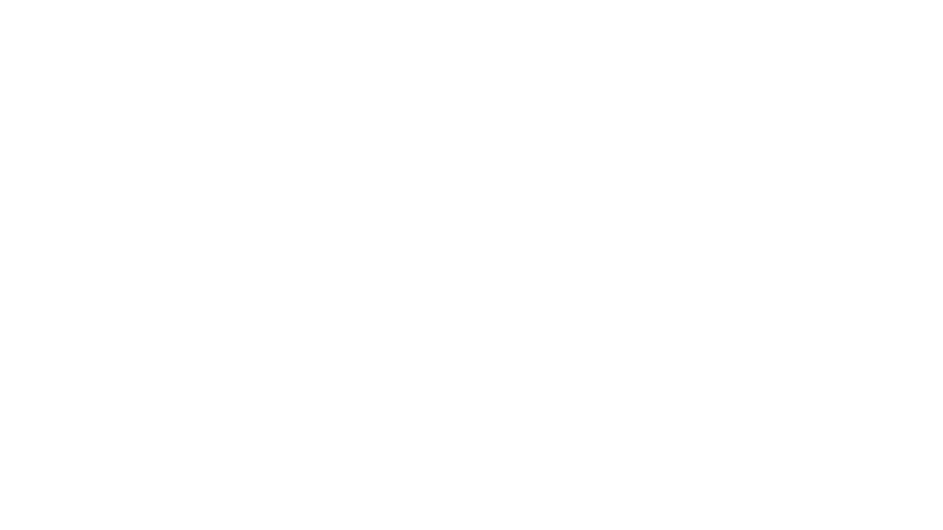 Jetshop Flight logo vit