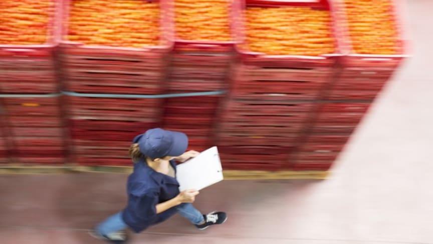 Mer kunskap och innovation stärker hållbar livsmedelskedja