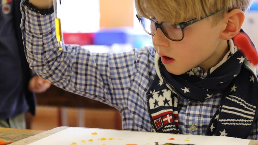 Forschertage Grundschule Louisenlund