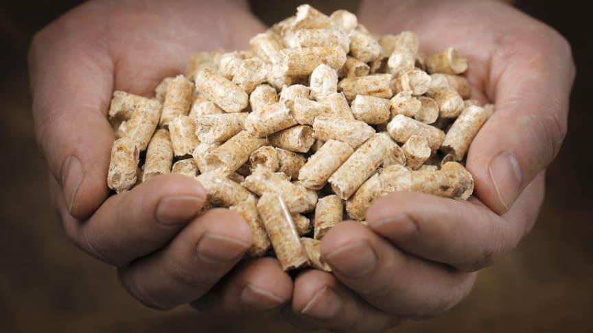 För första gången på över tio år var Sverige nettoexportör av pellets 2020.