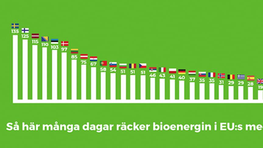 Så här många dagars energibehov täcker bioenergin i Europas länder – EU:s 28 medlemsländer plus ytterligare fyra länder.