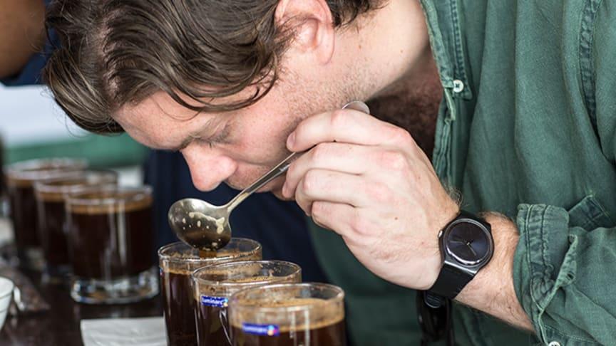 – Odling av högkvalité kaffe flyttar till allt högre altituder där det är svalare men i många länder kommer man inte högre, säger Wilhelm Nordquist, kaffeinköpare på Arvid Nordquist Kafferosteri.