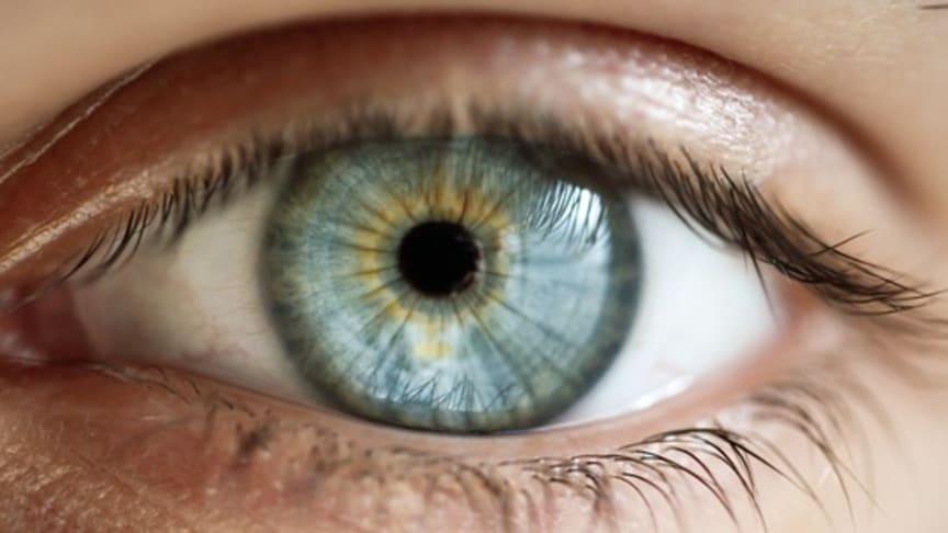 Stol-projekt för ögonspolning tilldelas 100 000 kronor från Innovationsfonden