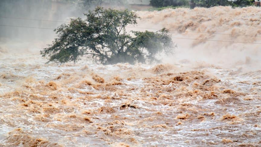 Auta luonnonkatastrofin uhreja
