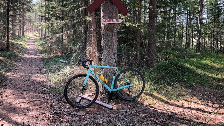 Hållbart cykelprojekt i Umeåregionen under 2020. Foto: Andreas Nilsson.